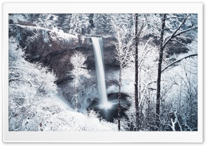 Forest Waterfall Winter