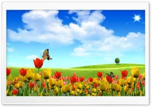 Dreamscape Spring