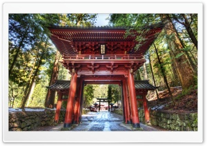 Temple Gate In Japan