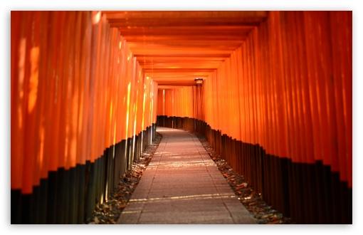 Download Torii Leading To The Inner Shrine UltraHD Wallpaper