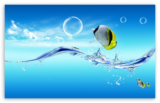 Download Fish Jumping Out Of The Water UltraHD Wallpaper