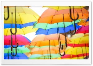 Colorful Umbrellas in the Air