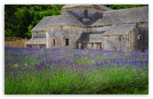 Download Lavender Garden, Monastery UltraHD Wallpaper