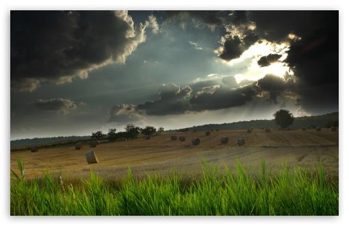 Download Landscape-Keltern UltraHD Wallpaper