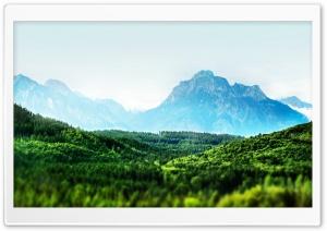 Mountain Forest Tilt-Shift