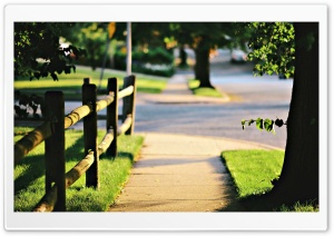 Nature, Street