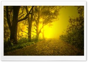 Brumas da Manha - Morning Mists