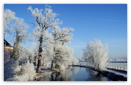 Download Winter Landscape, Utrecht, Netherlands UltraHD Wallpaper