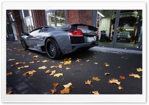 Lamborghini Sport Cars 14