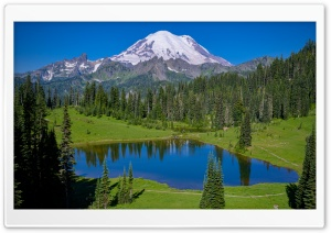 Landscape, Tipsoo Lake, Mt....