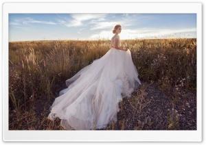 Bride, Field, Landscape,...