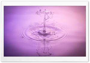 Liquid Droplet