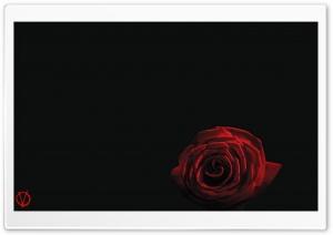 V For Vendetta Rose