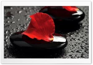 Zen Stones And Rose Petals