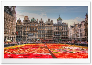 Flower Carpet - Grand Place -...