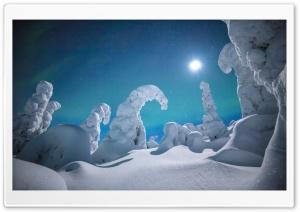 Lapland Winter Wonderland Night