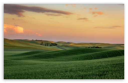 Download Green Wheat Fields near Palouse, Hills,... UltraHD Wallpaper