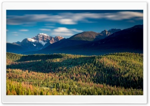 Jasper National Park, Canada,...