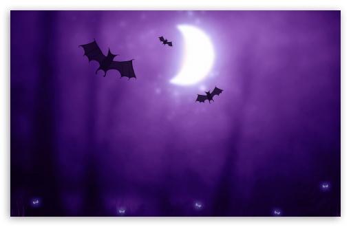 Download Bats   Halloween UltraHD Wallpaper