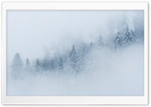 Mountain Forest Landscape,...