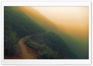 Sunol Regional Wilderness -...