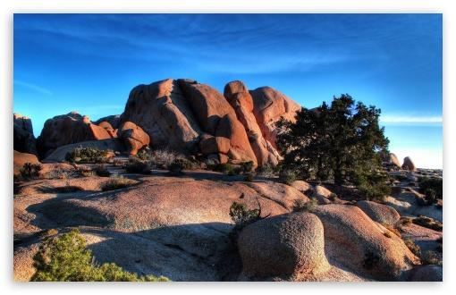Download Landscape Nature 31 UltraHD Wallpaper