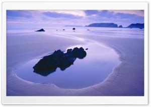 Beach Nature 54