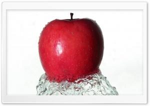Fresh Red Apple 1