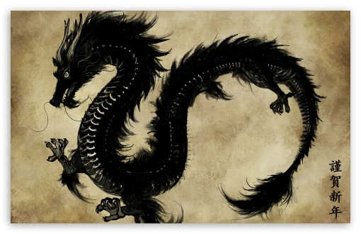 Download Chinese Black Dragon UltraHD Wallpaper
