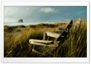 Coast Dunes