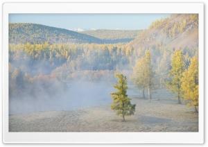 Forest River Fog