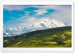 Denali National Park and...