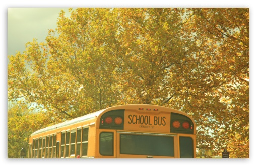Download School Bus Nostalgia UltraHD Wallpaper
