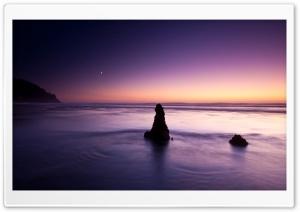 Purple Evening On The Beach