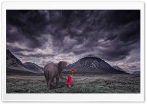 Elephant, Child Monk, Field,...