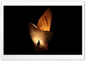 A Wooden Fire