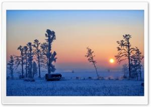 Wonderful Winter Morning