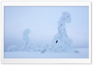 Lapland Beautiful Winter