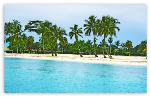 Download Bahamas Beach UltraHD Wallpaper