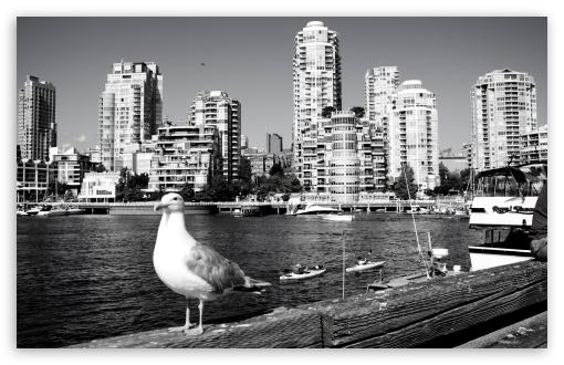 Download Vancouver UltraHD Wallpaper