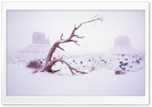Winter Season 15