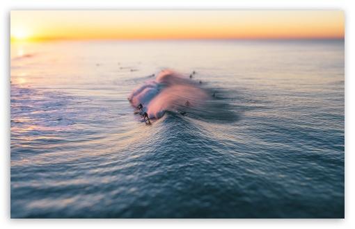 Download Surfing, Wave, Pacific Ocean, California UltraHD Wallpaper