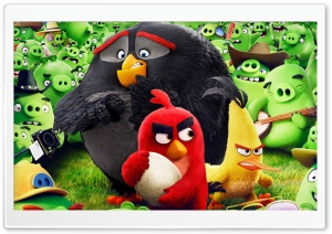 Angry Birds Animation Movie