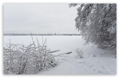 Download Winter, Littoinen, Finland UltraHD Wallpaper