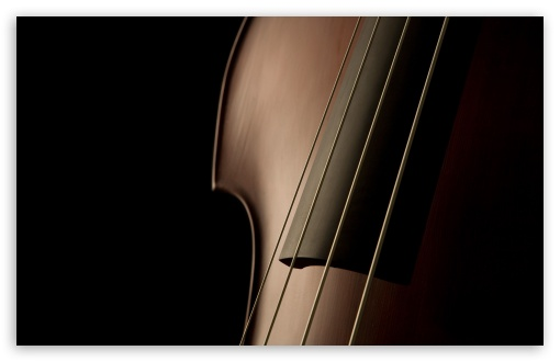 Download Double Bass Close Up UltraHD Wallpaper
