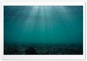 Lake Underwater