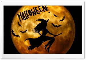 Halloween Witch on Broom Orange