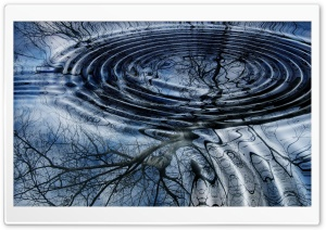 Water Ripples Top View