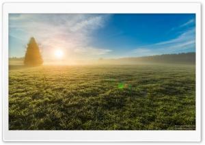 Morning Mist, Glowing Sunrise