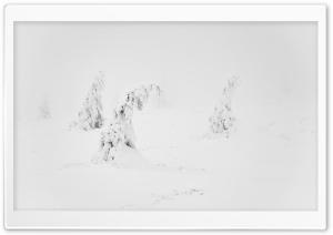 Winter White Snow Aesthetic